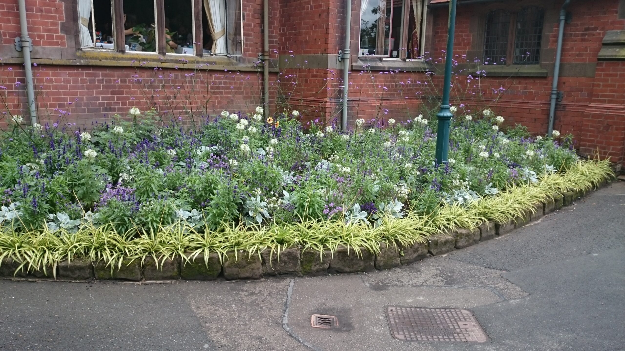 Front of building planted with purple and white flowers and grasses