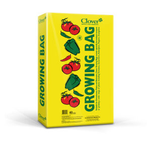 Clover-grow-bag-4-plant